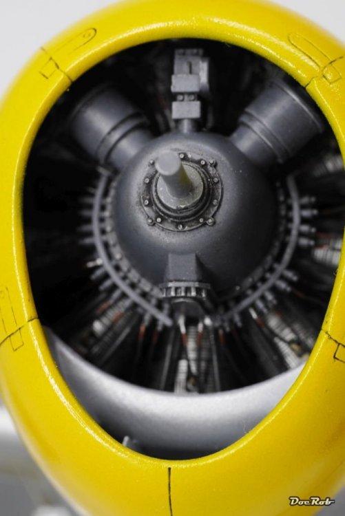 P1140713.thumb.JPG.ad29dfc93e90d9d904846d5a3e8894ad.JPG