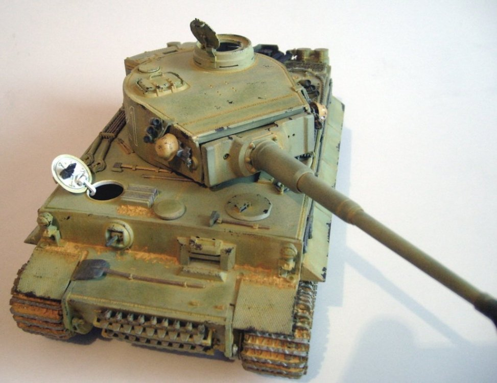 tigerEr-48.thumb.JPG.8f7898fe4c6ff6733f4c51b1659057ba.JPG