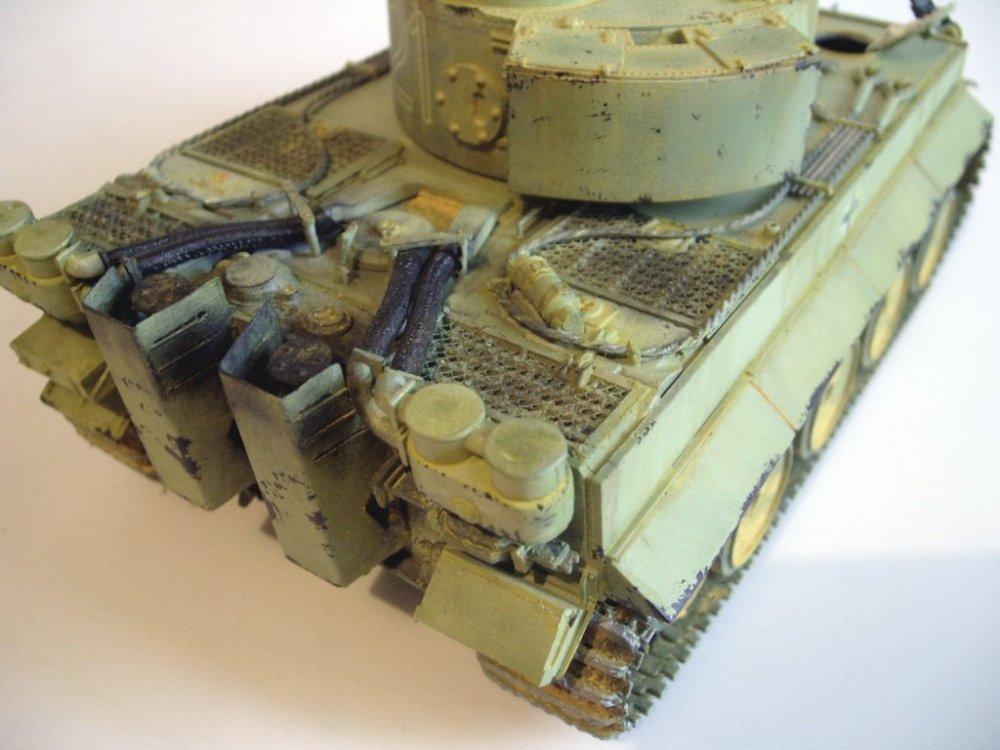tigerEr-51.thumb.JPG.949171ec077efbae77ac938b9b76b75c.JPG