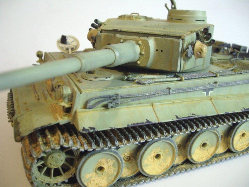 tigerEr-54.thumb.JPG.cac512053c3975fbbee3b724e10b30a2.JPG