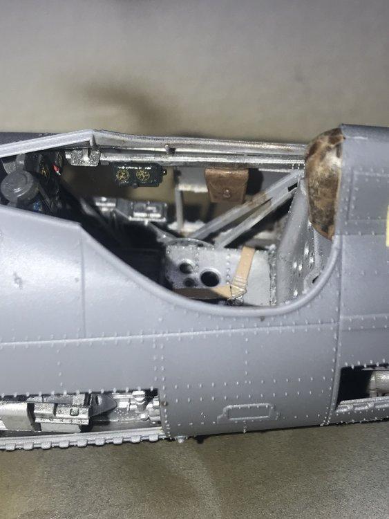 F1CC4C55-49E5-406F-8AAC-FAB59ED7F69A.jpeg
