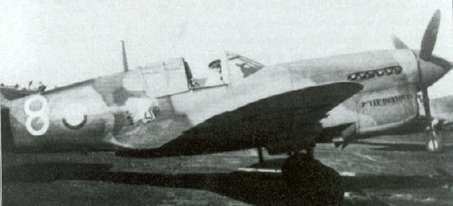 Curtiss-P-40M-Kittyhawk-FAF-GCII.5-White-8-Verrier-Thelepte-1943-01.jpg