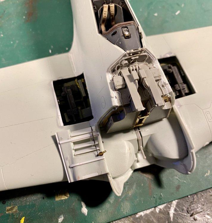 5CB38AF5-F9D6-44D2-81FD-3E490D7D4F96.jpeg