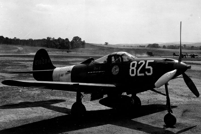 USAAF-42-18284-Bell-P-39-Airacobra-118TRS-Alan-S-Davis-USA-03.jpg