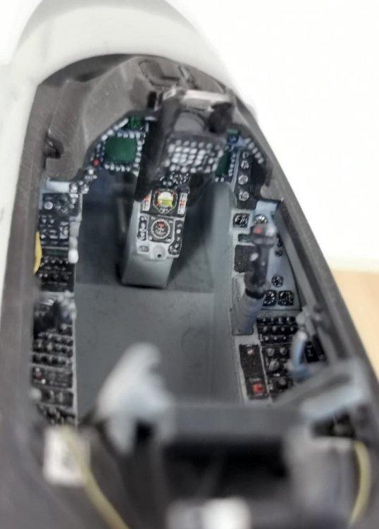 D8ED05F6-E8CE-4F0E-8D32-0CA1DCF156E9.thumb.jpeg.19602519cce3c3d9f44789f5bb19bdac.jpeg